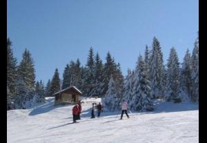 Tanie noclegi na stoku Maciejowa-ski Rabka-Zdrój-778