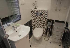 Apartament Fantazja w centrum Zakopanego-4613