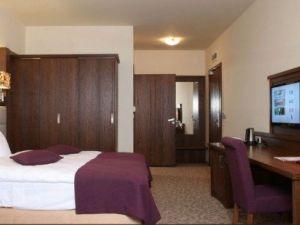 Hotel Mercure Krynica Zdrój Resort&SPA-5962