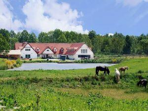 Zdjęcie dla Perfect Horse Centre
